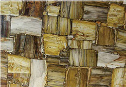 木化石方形 Petrified Wood Square